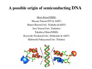 A possible origin of semiconducting  DNA