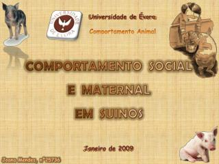 Universidade de Évora Comportamento Animal