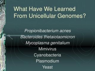 What Have We Learned From Unicellular Genomes?