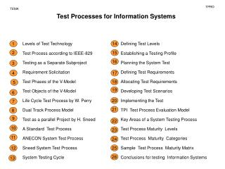 Test  Process es  for  Information S ystems