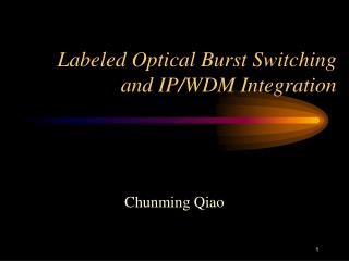 Labeled Optical Burst Switching and IP/WDM Integration