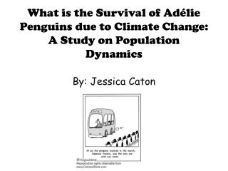What is the Survival of Adélie Penguins due to Climate Change:  A Study on Population Dynamics
