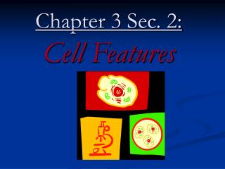 Chapter 3 Sec. 2: Cell Features