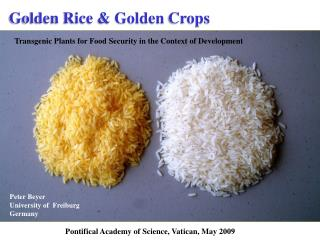 Golden Rice & Golden  Crops