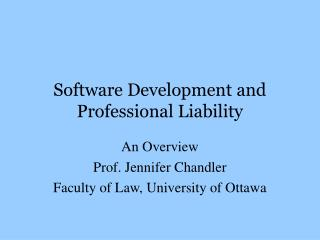 Software Development and Professional Liability