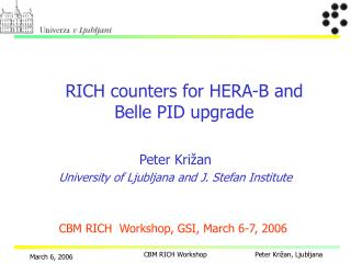 RICH  count e r s for HERA-B and Belle PID upgrade
