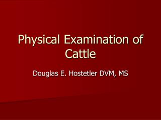 Physical Examination of Cattle