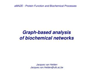 Graph-based analysis  of biochemical networks