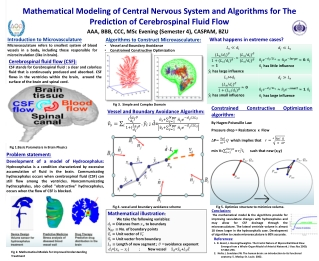 Mathematical and Computational Modeling of Arterial Blood Flow