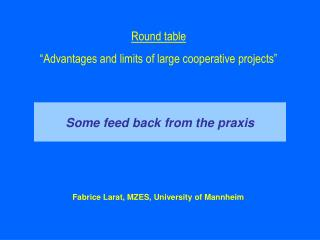 "Round table ""Advantages and limits of large cooperative projects"""