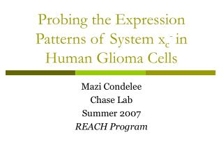 Probing the Expression Patterns of System x c -  in Human Glioma Cells
