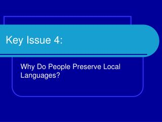 Key Issue 4: