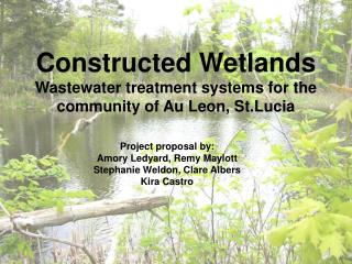 Constructed Wetlands Wastewater treatment systems for the community of Au Leon, St.Lucia