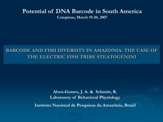 BARCODE AND FISH DIVERSITY IN AMAZONIA: THE CASE OF THE ELECTRIC FISH TRIBE STEATOGENINI
