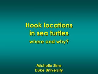 Hook locations in sea turtles where and why? Michelle Sims Duke University