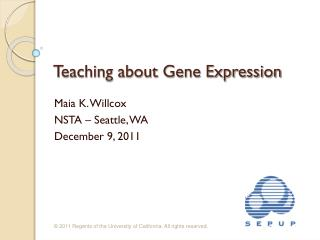 Teaching about Gene Expression