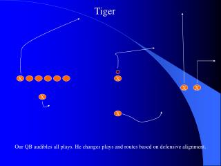 Our QB audibles all plays. He changes plays and routes based on defensive alignment.