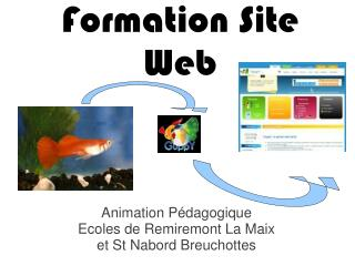 Formation Site Web