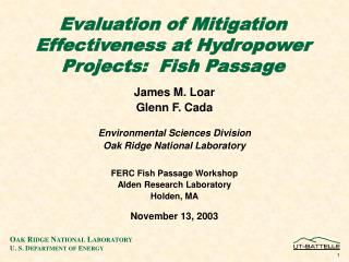Evaluation of Mitigation Effectiveness at Hydropower Projects:  Fish Passage