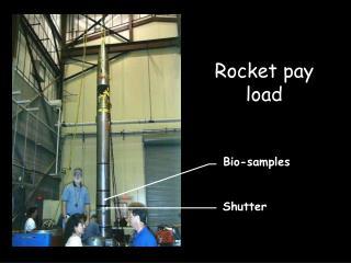 Rocket pay load