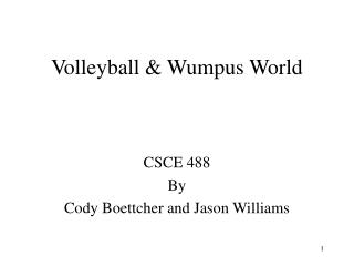 Volleyball & Wumpus World