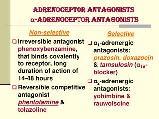 Adrenoceptor Antagonists  α-Adrenoceptor Antagonists