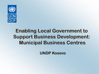 Enabling Local Government to Support Business Development:  Municipal Business Centres