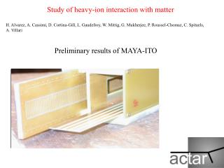 Preliminary results of MAYA-ITO