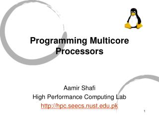 Programming Multicore Processors