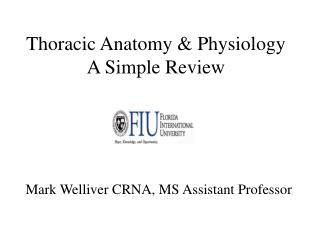 Thoracic Anatomy & Physiology A Simple Review