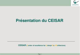 CEISAR  ( C enter of excellence for  E nterpr IS e AR chitecture )