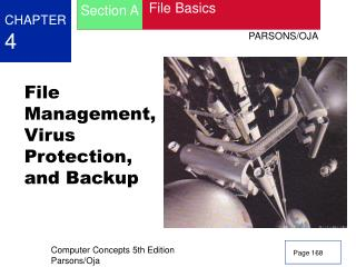 File Management, Virus Protection, and Backup