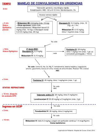 Estatus Epileptico Pediatria Download