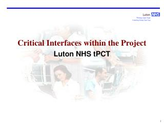 Critical Interfaces within the Project Luton NHS tPCT