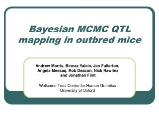 Bayesian MCMC QTL mapping in outbred mice