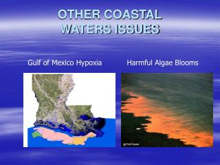 OTHER COASTAL  WATERS ISSUES