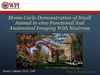 Monte Carlo Demonstration of Small Animal in-vivo Functional And Anatomical Imaging With Neutrons