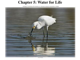 Chapter 5: Water for Life