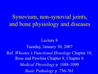 Synovium, non-synovial joints, and bone physiology and diseases