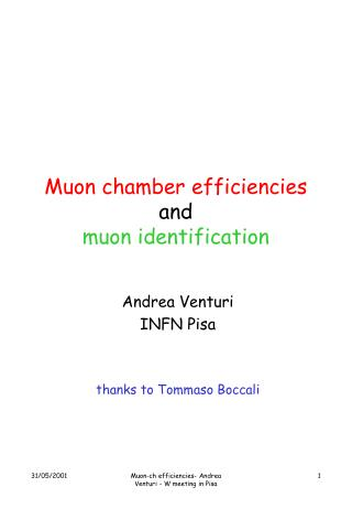 Muon chamber efficiencies and  muon identification