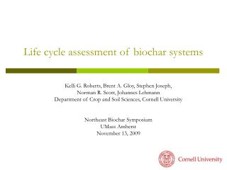 Life cycle assessment of biochar systems