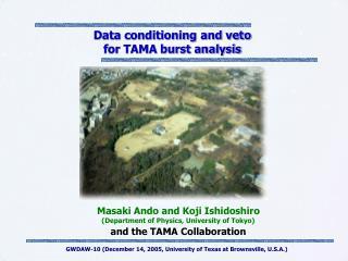 Data conditioning and veto for TAMA burst analysis