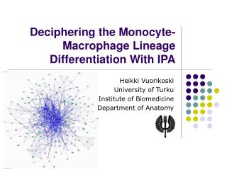 Deciphering the Monocyte-Macrophage Lineage Differentiation With IPA