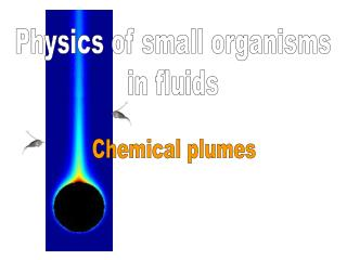 Chemical plumes