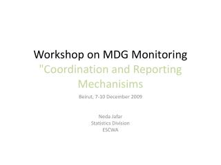 "Workshop on MDG Monitoring ""Coordination and Reporting Mechanisims"