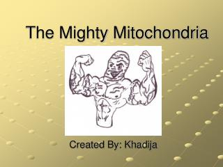 The Mighty Mitochondria