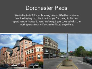 Dorchester Pads