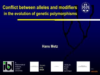 Conflict between alleles and modifiers in the evolution of genetic polymorphisms