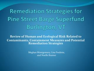 Remediation Strategies for   Pine Street Barge Superfund Burlington, VT