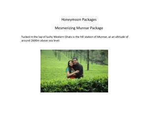 Mesmerizing Munnar Package